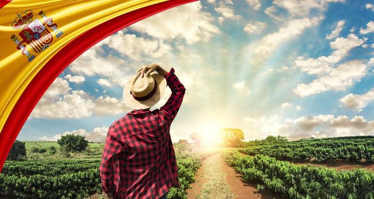 دليل الحصول على تأشيرة عمل في إسبانيا